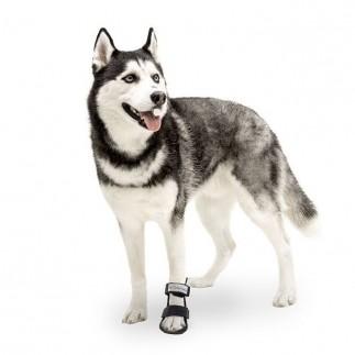 Attelle botte basse pour chien