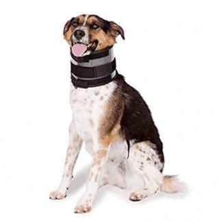 Immobilizer Dog Collar