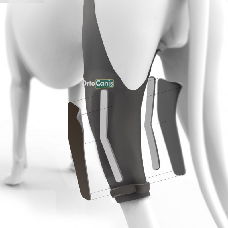 Cooler knee