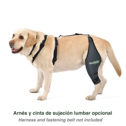 Dog knee brace with harness and fastening belt