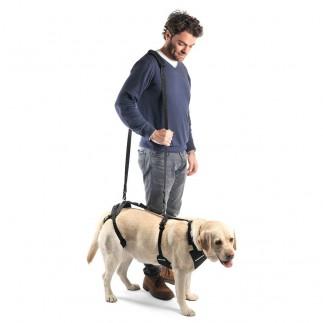 Arnés para perro patas delanteras y de atrás