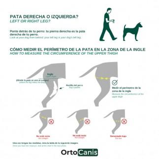 Dog knee brace