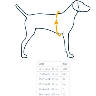 Tallas chaleco salvavidas para perro
