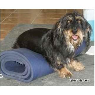 Airex tapis pour la thérapie manuelle