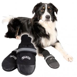 botinhas de cachorro