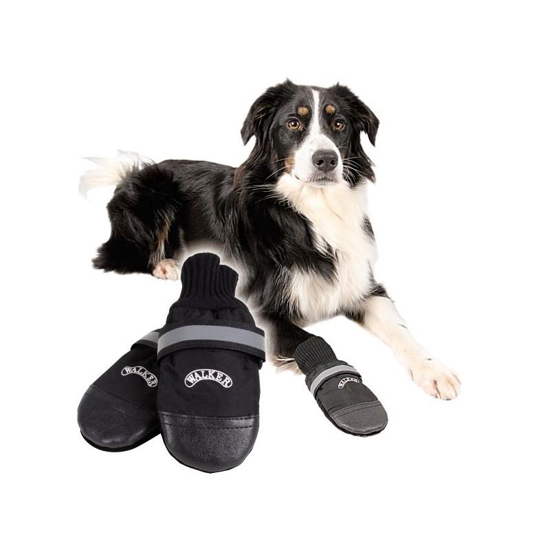 botines perro