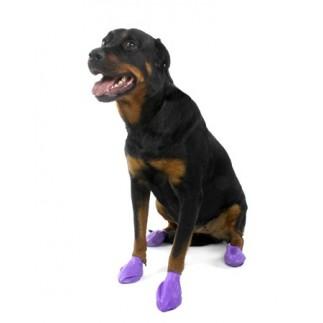 Bottes Pawz pour chien
