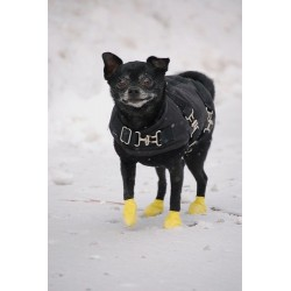 Calzado canino de goma