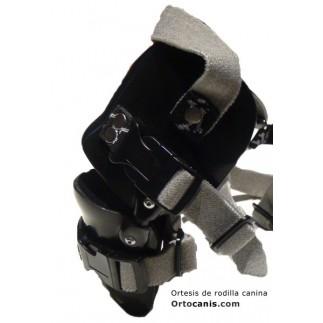 braces for canine patellar dislocation