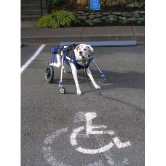 Accesorio ruedas delanteras