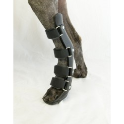 Rear Leg Splint for Dogs