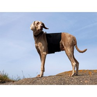 Soporte para columna perro