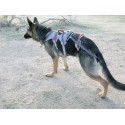 Double Back Harness. Arnés para perro discapacitado