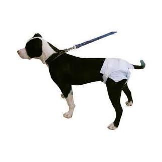 Hund Windel