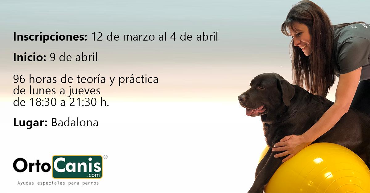 Curso de rehabilitación veterinaria