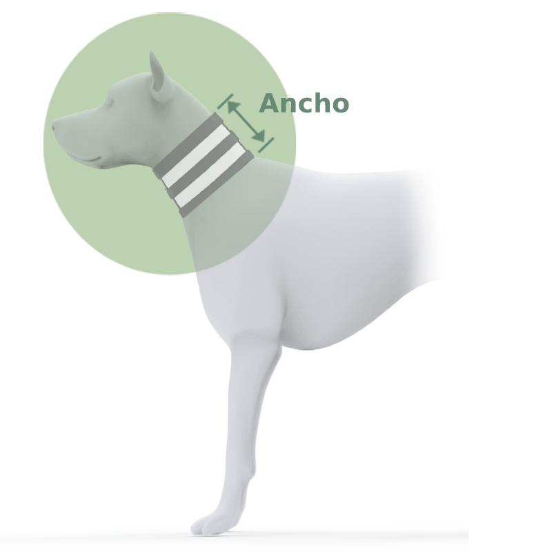 Collar inmovilizador para perros