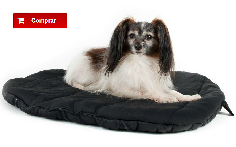 Cama ortopédica para perro con artrosis
