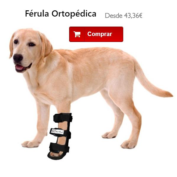 Férula inmobilizadora para perro