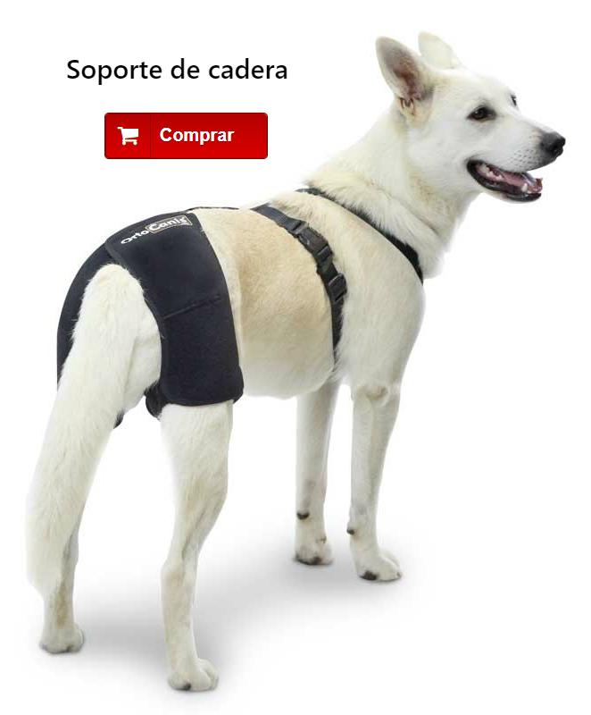 Soporte de cadera para perros con displasia de cadera