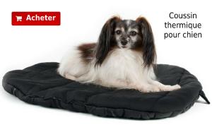 Coussin thermique pour chien