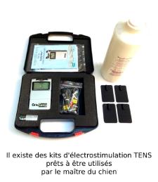 Pack TENS électrostimulation pour chien