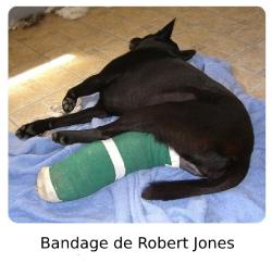 Bandage Robert Jones