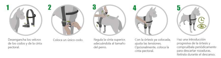 """""""instrucciones"""