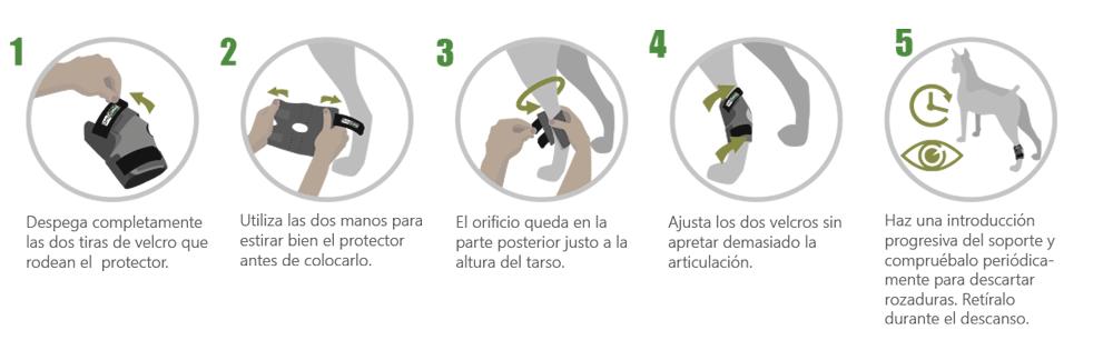 Instrucciones soporte de tarso
