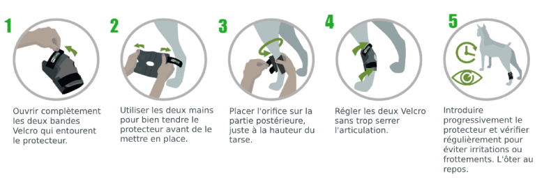 Instructions Soutien du tarse