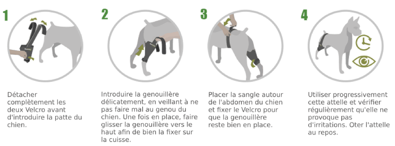 Instructions genouillère