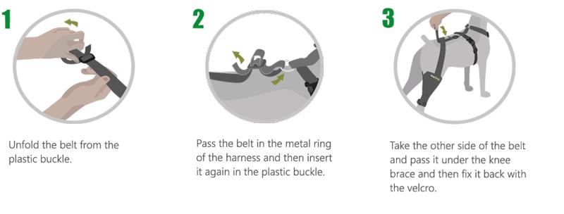 Knee brace fix belt Instructions