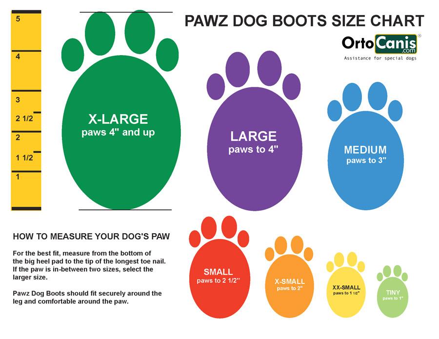 size Pawz dog boots